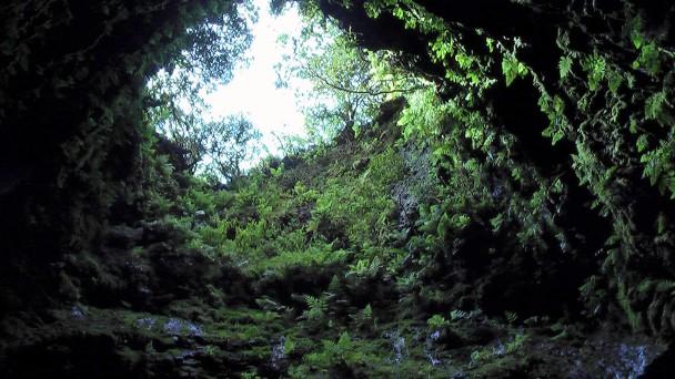 Algar do Carvao, Terceira, pohled z propasti